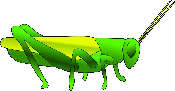 600x313 Grass Hopper Clip Art
