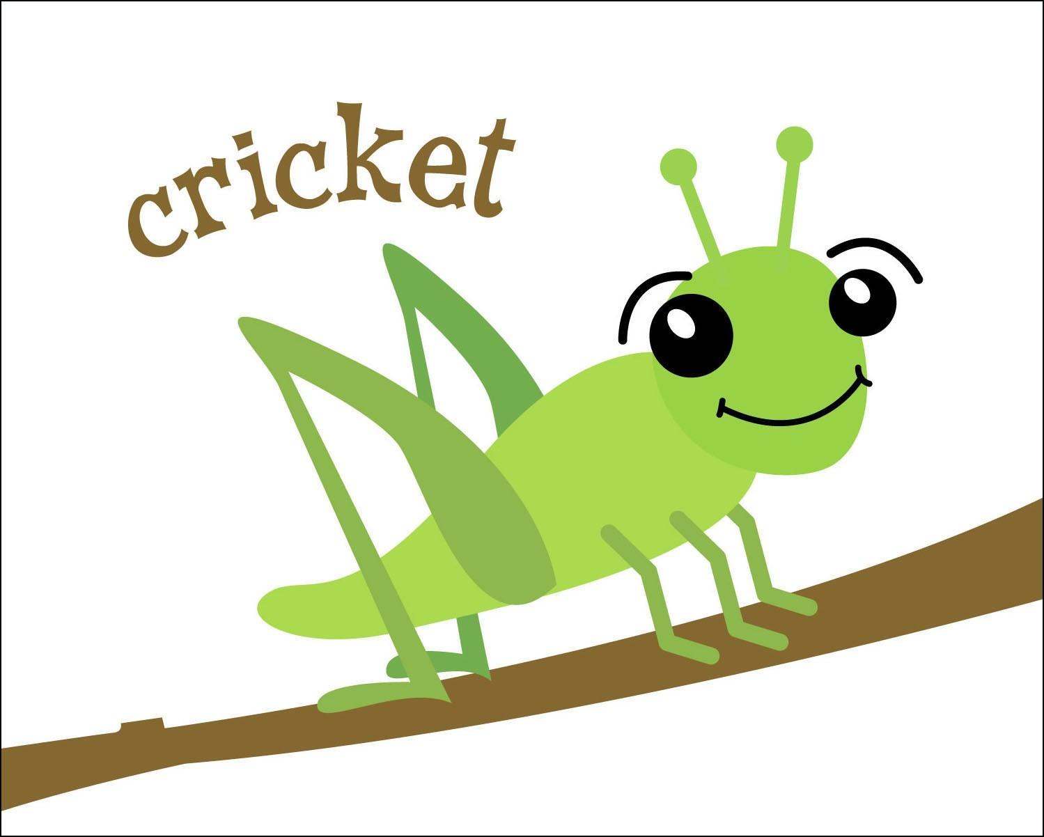 1499x1202 Insect Cricket Clipart Clipartfox 3