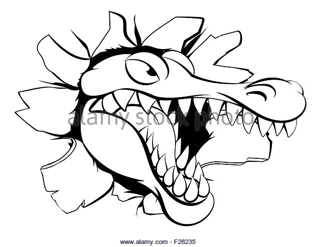 640x493 Crocodile Attack Black And White Stock Photos Amp Images