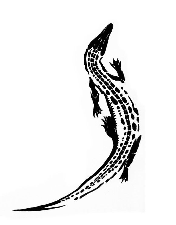 580x740 61 Best Crocodile Tattoo Outline Images