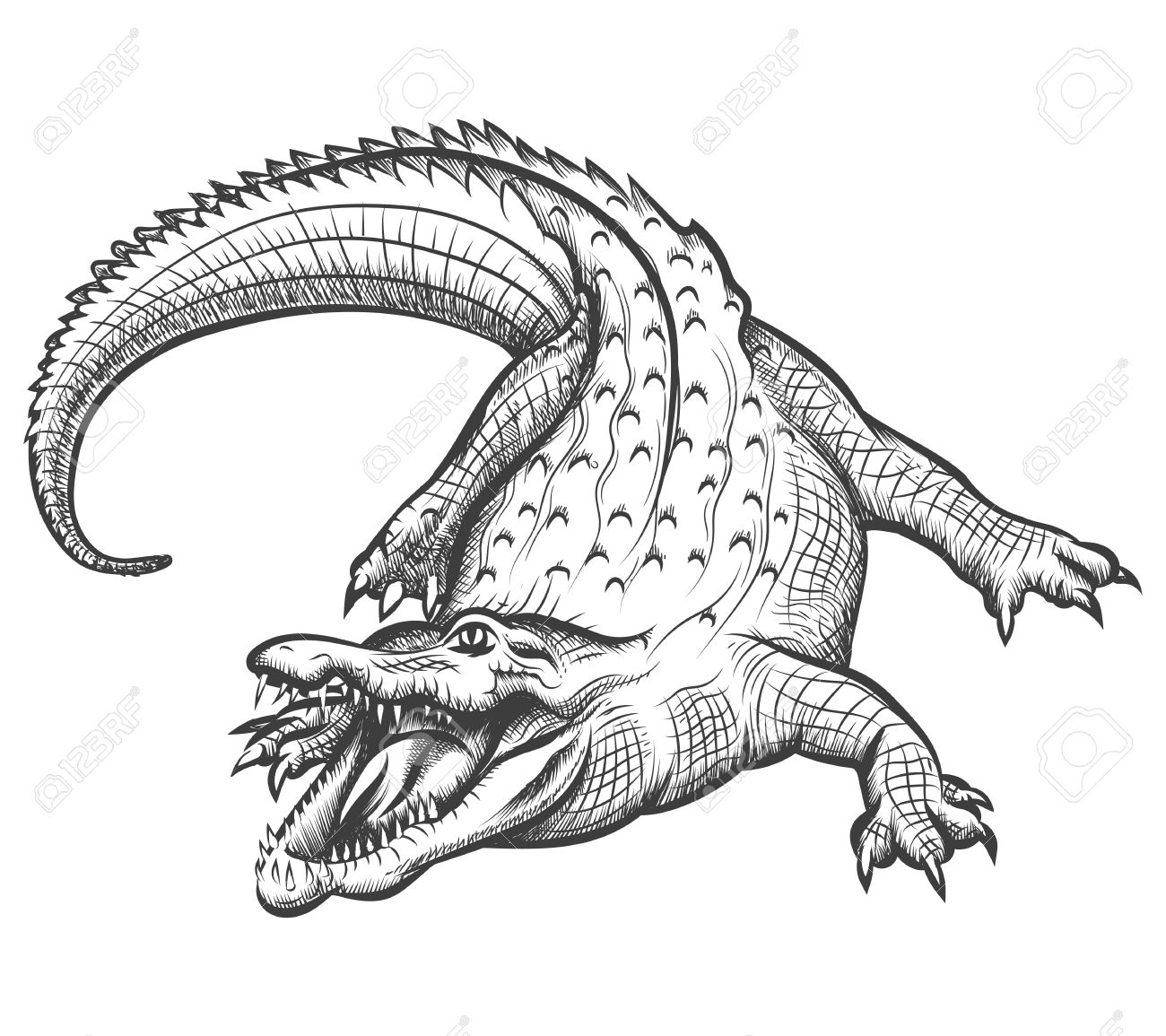 Crocodile Black And White | Free download best Crocodile Black And ... for Clipart Crocodile Black And White  197uhy