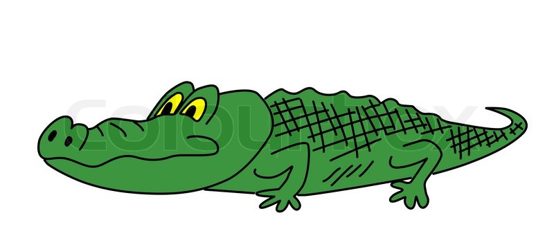 800x357 Drawing Green Crocodile On White Background Stock Photo Colourbox