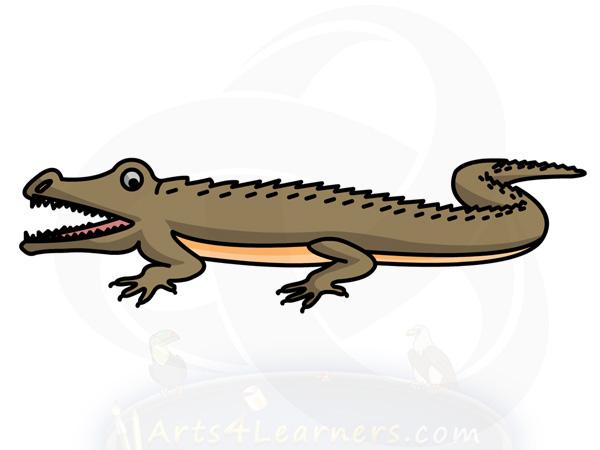 600x450 How To Draw A Crocodile Arts4learners