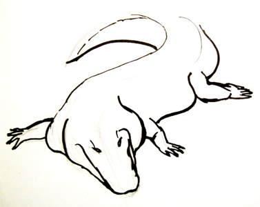 377x300 Learn How To Draw A Crocodile
