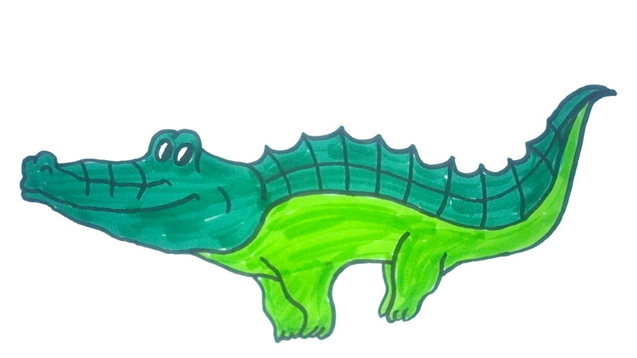 1280x720 How To Draw A Baby Crocodile Easy Step By Step Drawing For Kids