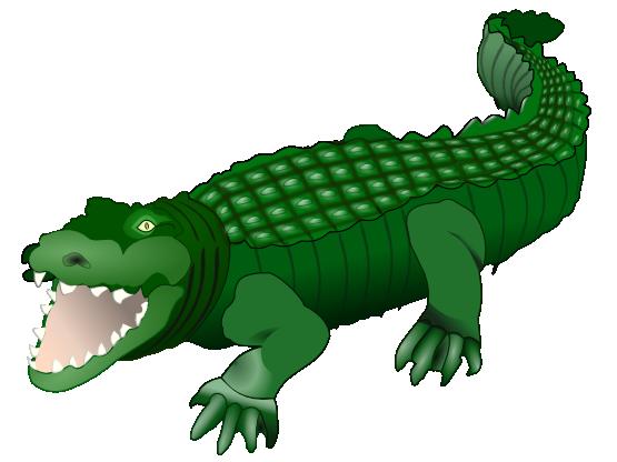 555x416 Rainforest Clipart Crocodile