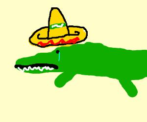 300x250 Sad Crocodile Wearing Sombrero