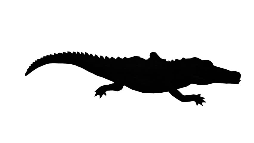 852x480 Crocodile Swaying Body Climb Crawling,dangerous Animals Sketch