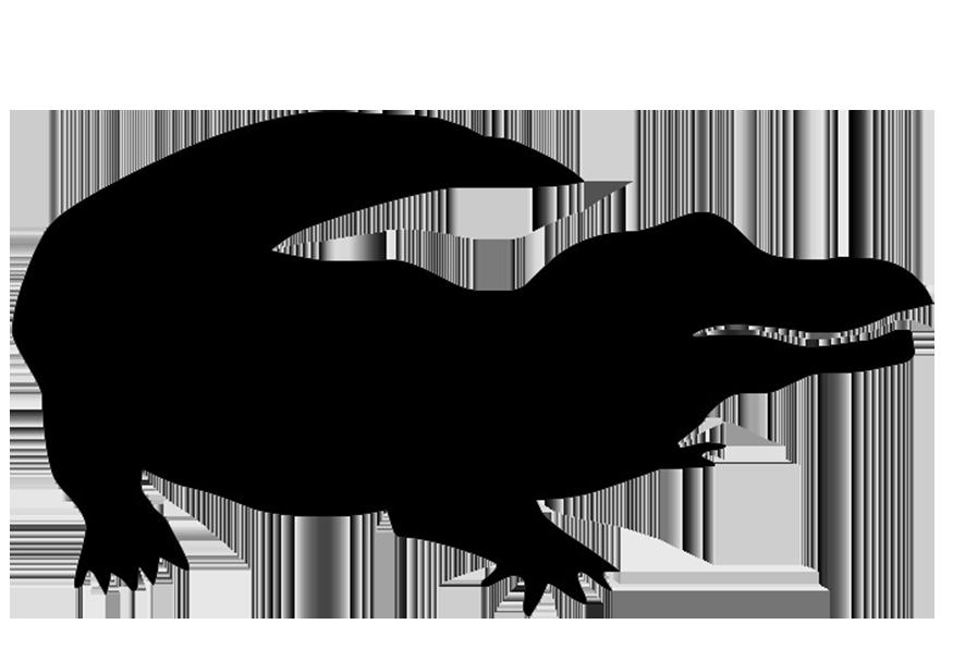 886x607 Crocodile Clipart Shadow