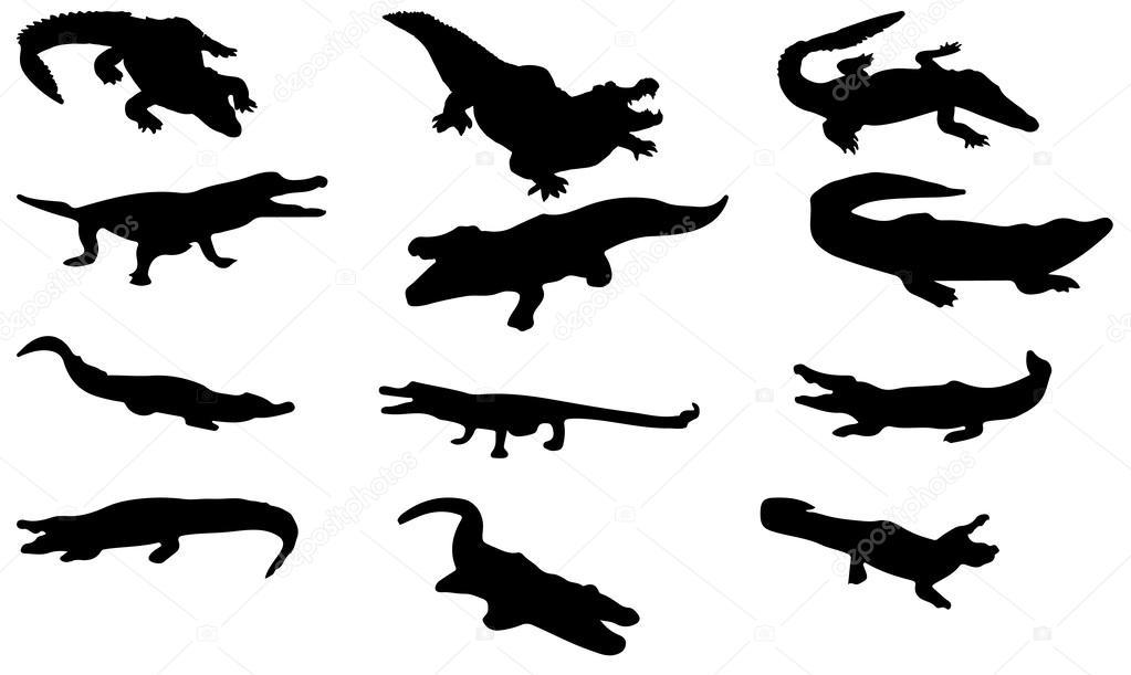 1023x611 Silhouette Crocodile Vector Stock Vector Newelle