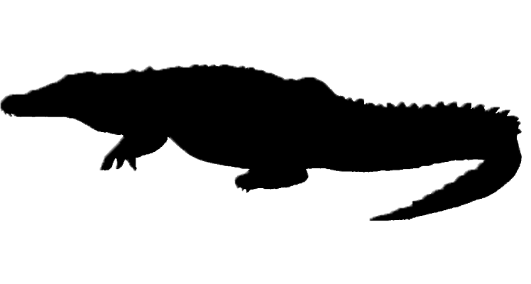 748x400 The Croc Clipart Panda
