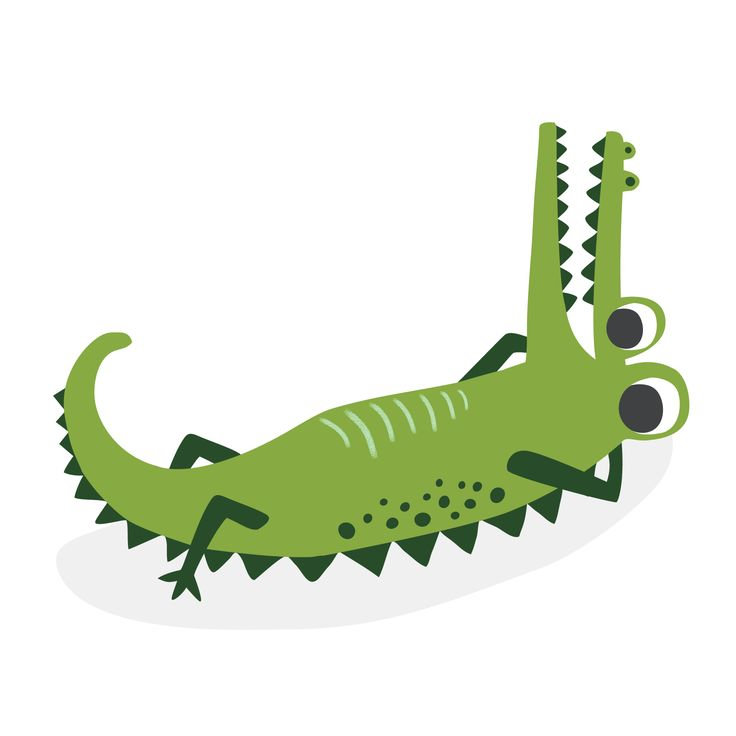 736x736 601 Best Crocodile Images Draw, Dinners And Dragons