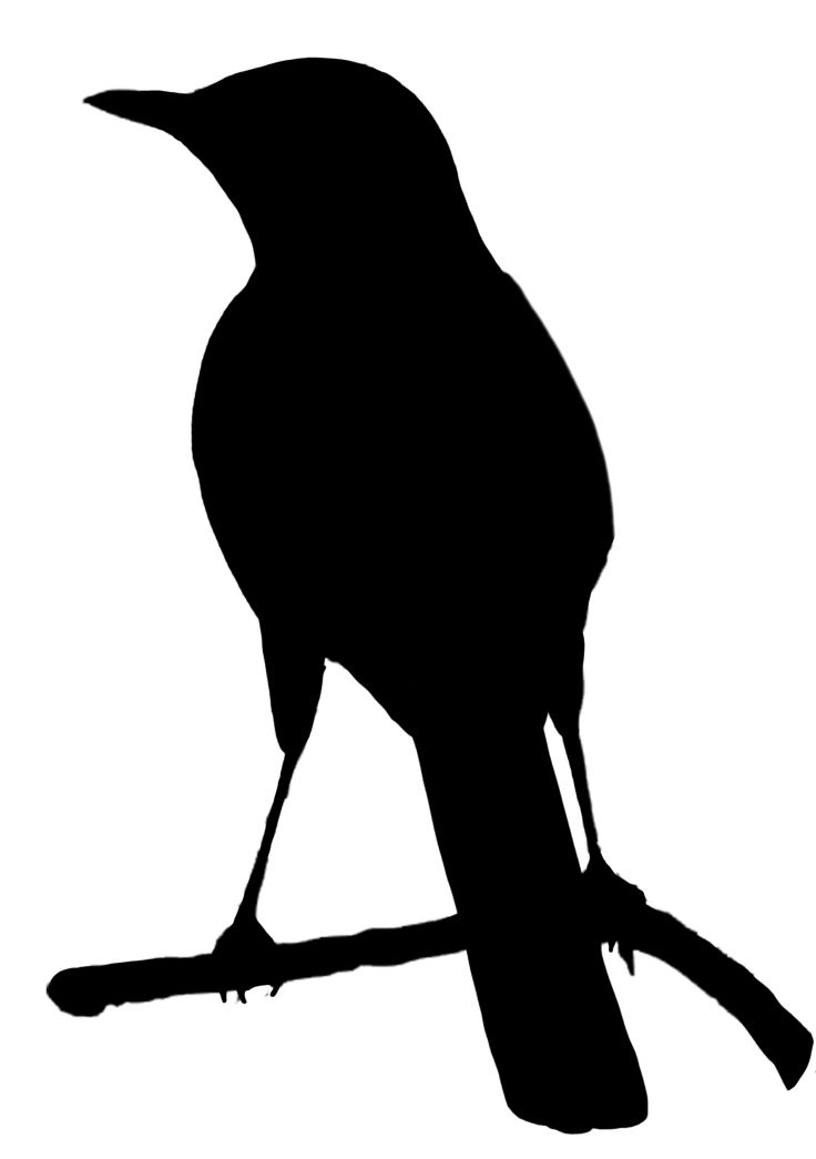 Crow Clipart Black And White