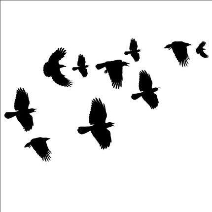 430x430 Murder Of Crows
