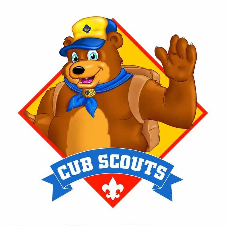 Cub Scout Picture