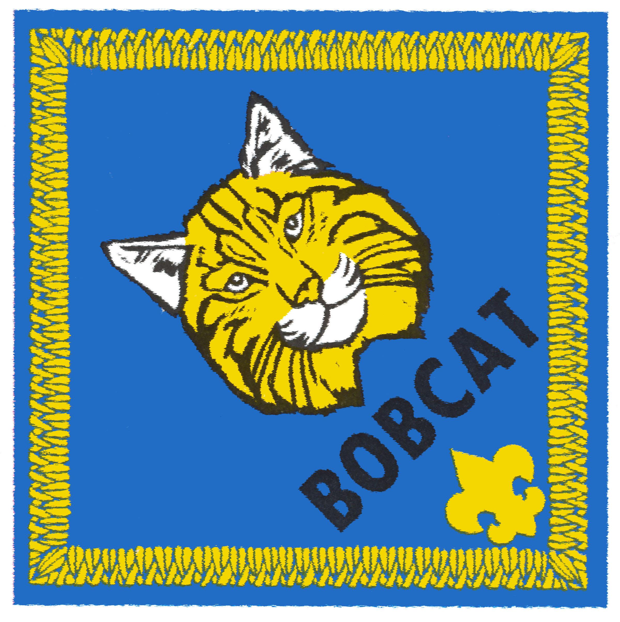 2400x2408 Cub Scout Clipart
