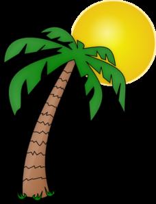 228x298 Palm Tree Clipart Cuban