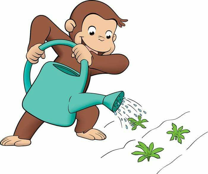 Curious George Clipart