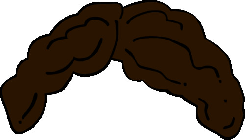 500x287 Brown Hair Clipart Curly Hair