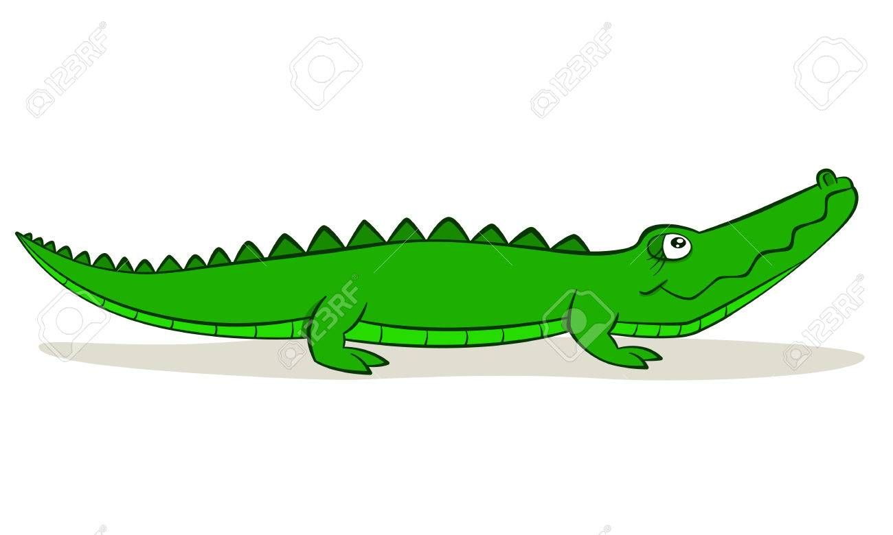 1300x780 Cute Cartoon Alligator On Isolated White Background, Vector