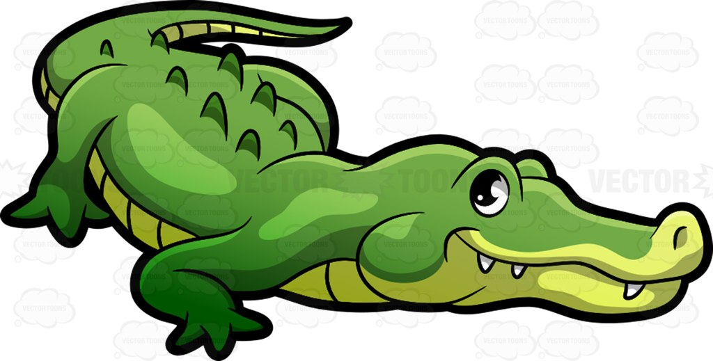 1024x519 Alligator Clipart Cartoon