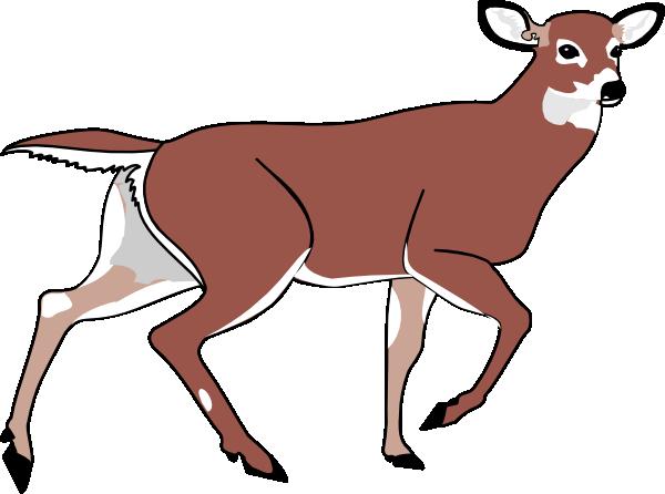 600x446 Cute Deer Line Art Free Clip Art Image 2 3