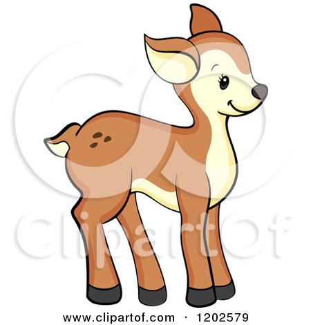 450x470 Deer Clipart Fawn