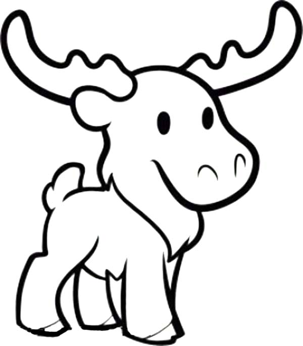 600x685 Cute Moose Coloring Page