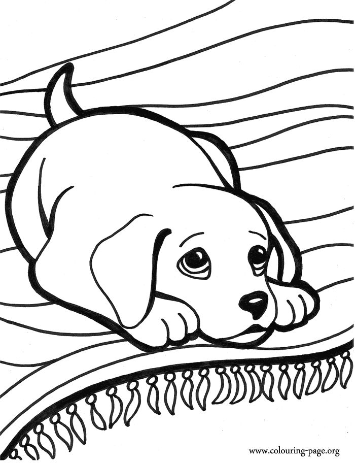 700x912 Best Puppy Coloring Pages Ideas Kids Coloring