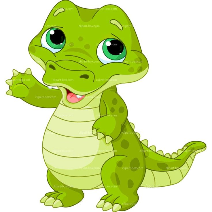 736x736 Crocodile Clipart Chibi