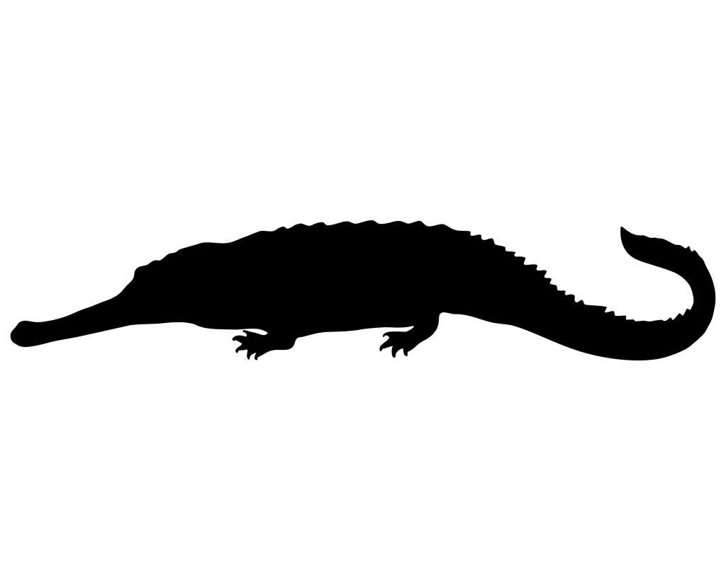 1024x819 Crocodile Silhouette Clip Art