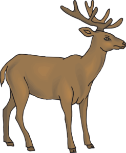 246x299 Cute Deer Clipart Free Clipart Images 3