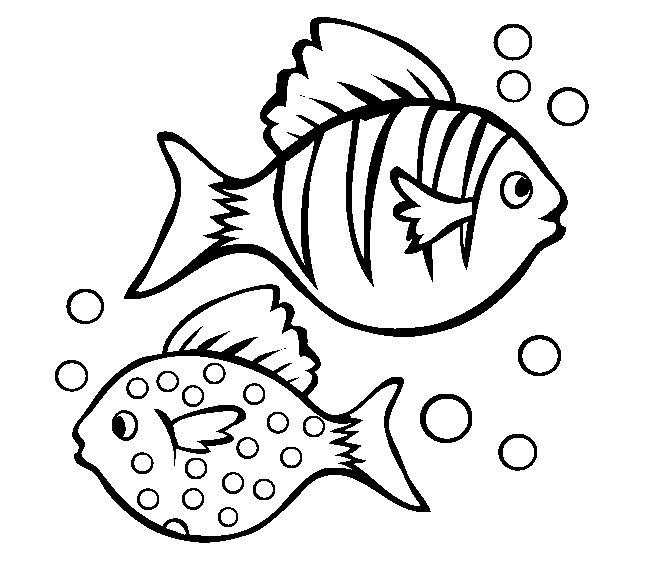 cute fish outline free download best cute fish outline on
