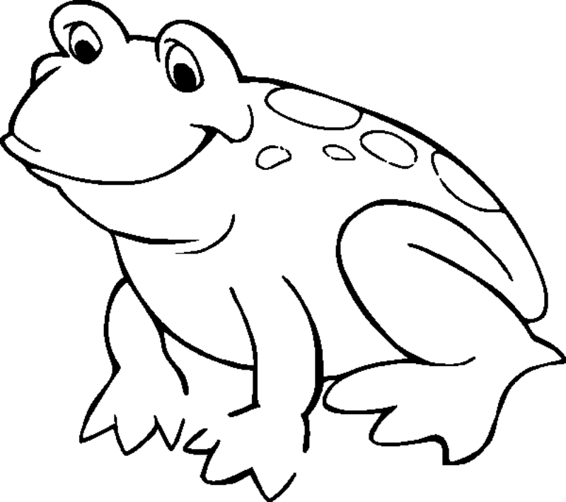 800x709 Frog Coloring Pages Many Interesting Cliparts