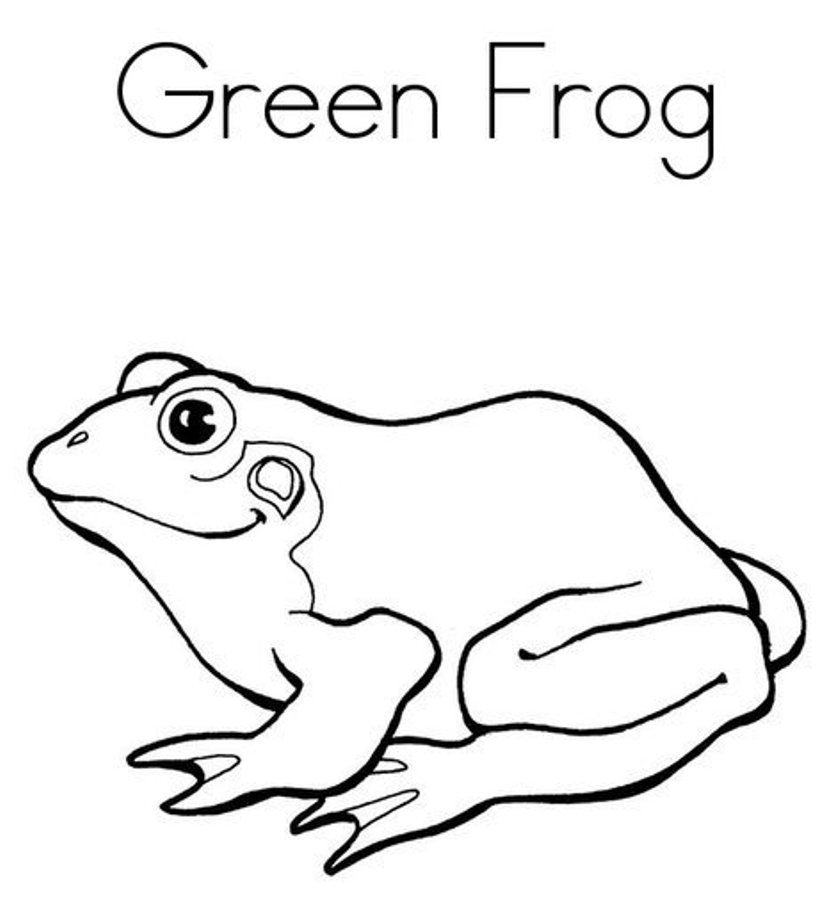 833x911 Frog Pictures To Print Many Interesting Cliparts