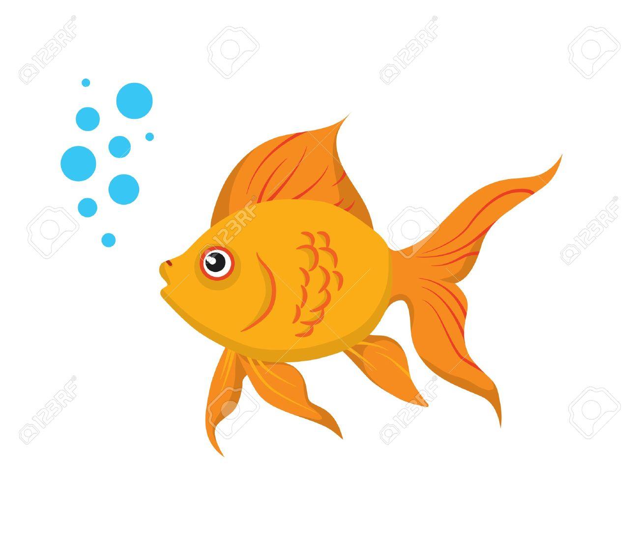 35 beauty cute goldfish rh classicviralvideos com