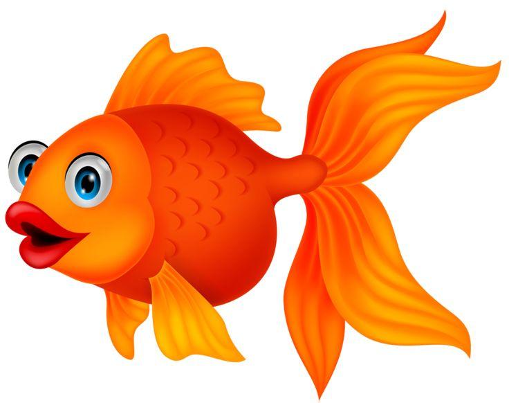 736x582 Goldfish Clipart Orange Fish