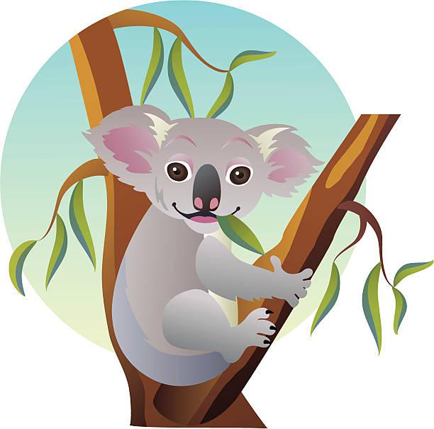 Collection of Koala clipart | Free download best Koala ...