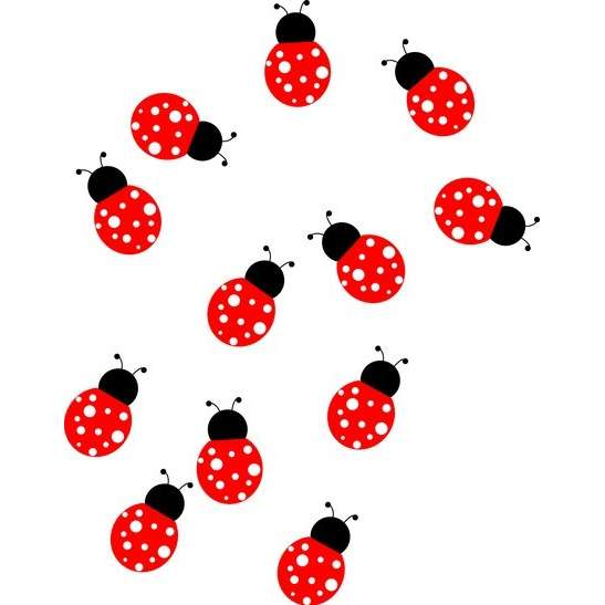 547x547 Cute Ladybug Drawings Free Clipart Images 3