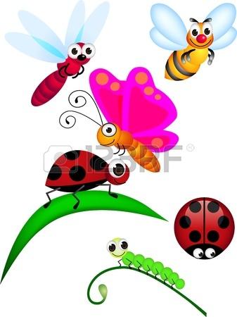 337x450 Ladybug Images Amp Stock Pictures. Royalty Free Ladybug Photos