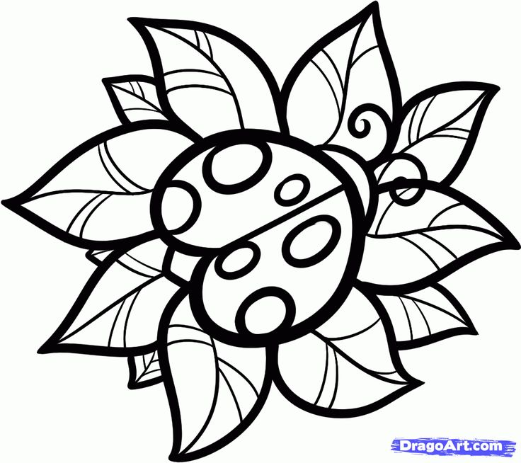 736x654 35 Best Ladybug Tattoo Outlines Images Bright Color