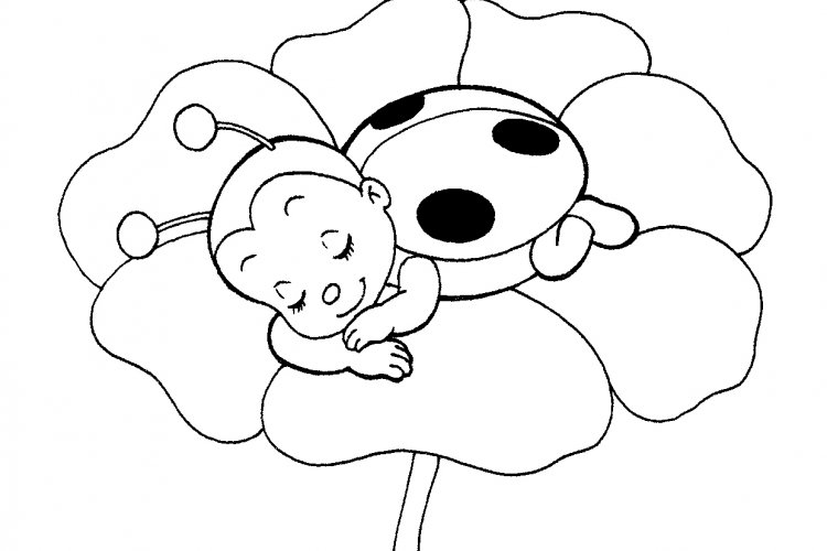 750x500 Best Cute Ladybug Coloring Pages 47 About Remodel Coloring Pages