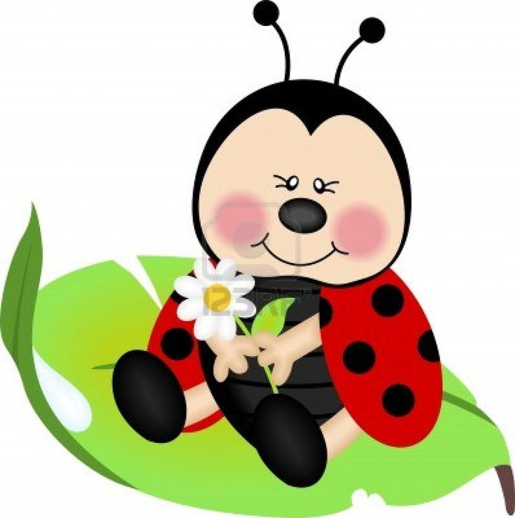736x739 221 Best Lady Bug Love Images Lady Bug, Pictures