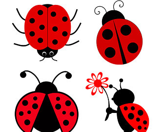 340x270 Ladybug Clipart Cute Button