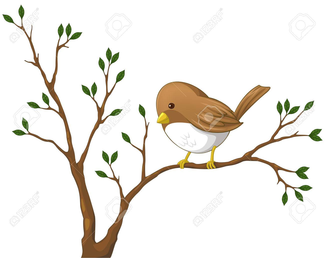 1300x1032 Cute Little Nightingale Bird On The Branch Of The Tree Royalty