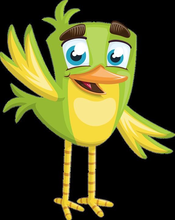 574x720 Free Photo Hello Little Boy Cute Small Bird Welcome Green
