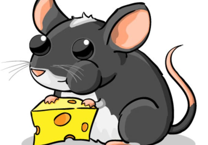 680x474 Draw Any Animal You Want In My Cute And Chubby Cartoon Style By