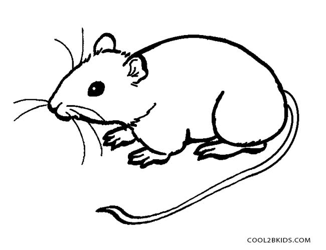 650x499 Printable Mouse Coloring Pages For Kids Cool2bkids