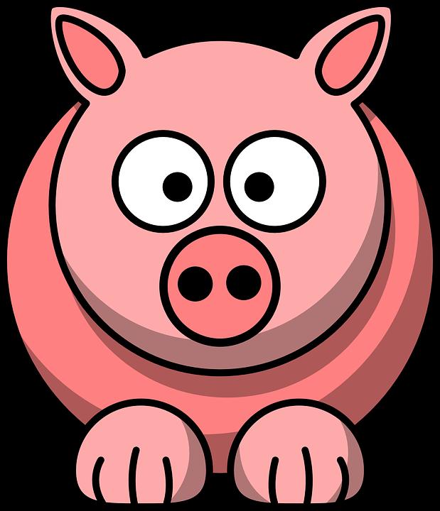 619x720 Free Photo Animal Face Pig Mammal Head Funny Pink Cute