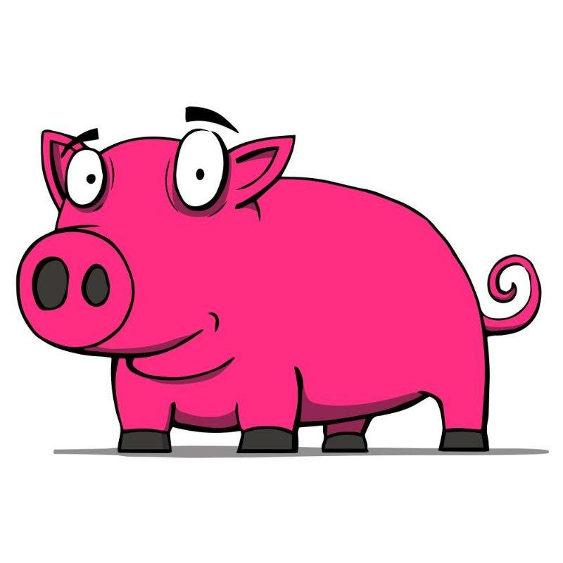 800x800 Wallmonkeys Wall Decals Stickers Wallmonkeys Wm158250 Cute Pig